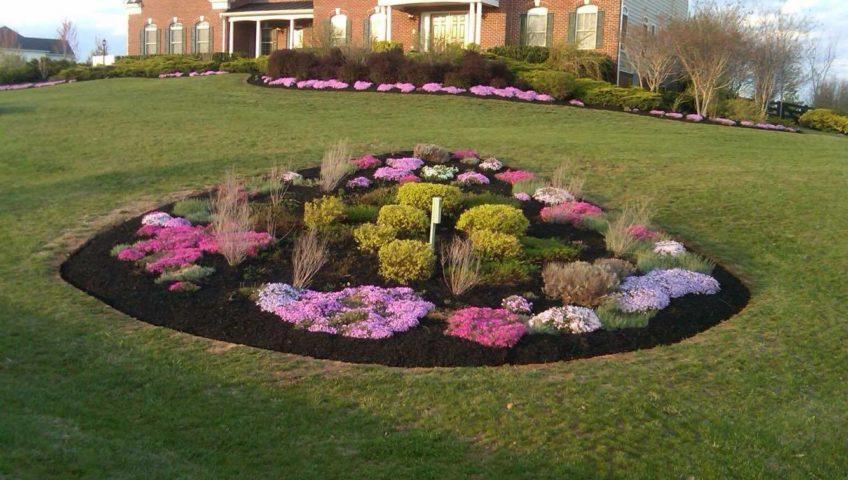 Regular care and maintenance landscaping benitez for General garden services